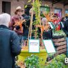 Grande vente de plantes rares & légumes anciens | 2020 — <em>Niederhaslach</em>