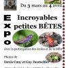 Exposition : Incroyables petites Bêtes — <em>La Broque</em>